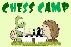 2017 Chess Summer Camps